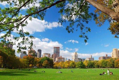 Центральный парк в США
