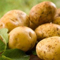 Что можно приготовить из картошки