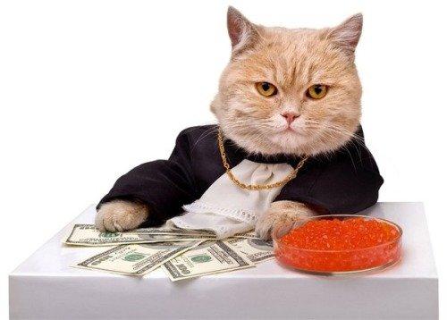 Советы как стать богатым и успешным