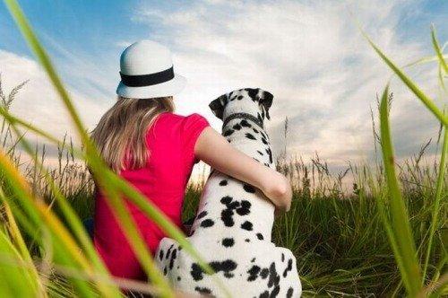 Как воспитать собаку для охраны?