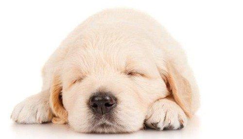 Как правильно ложиться спать