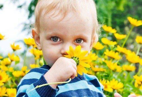 аллергия сухой нос
