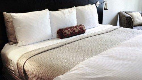 Как выбрать одеяло из верблюжьей шерсти