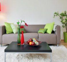 Обустроенная однокомнатная квартира