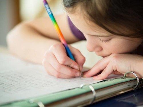 Домашние уроки