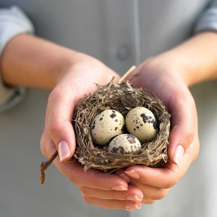 Перепелиные яйцв для женщин