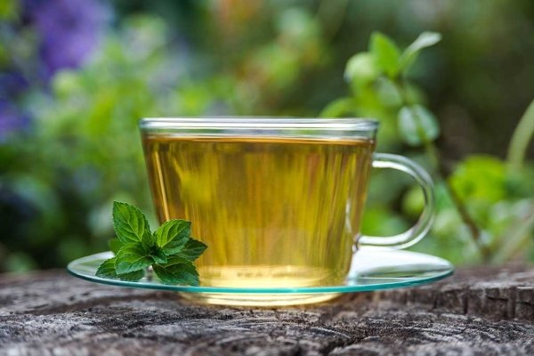 Лечебный чай с перечной мятой