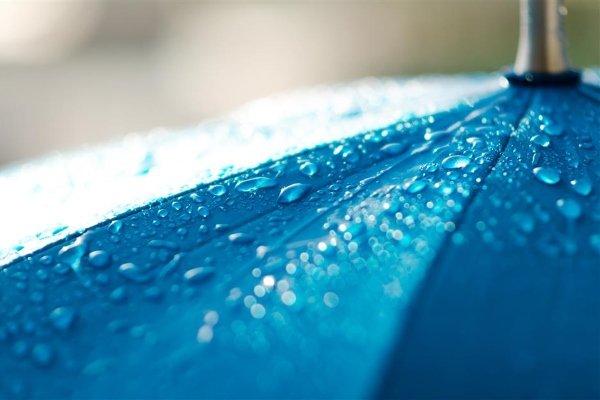Промывают зонт водой