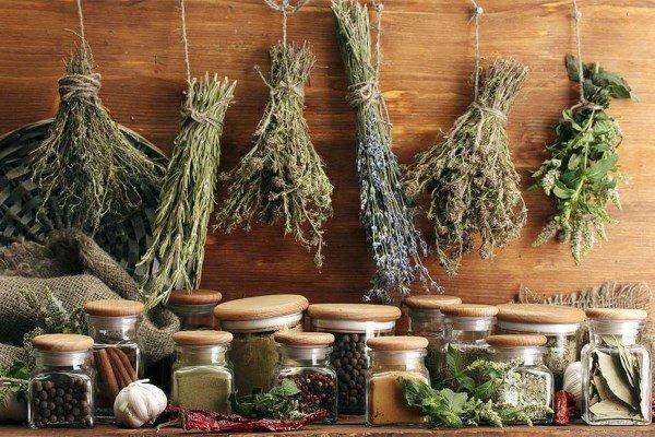 Народная медицина от глистов в легких