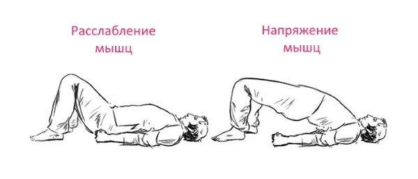 Расслабление и напряжение мышц